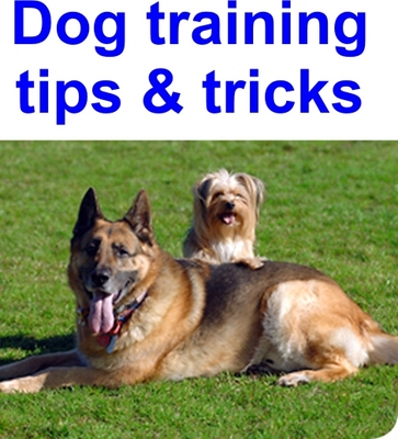Product picture Dog training tips & tricks